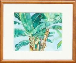 Maui Grown