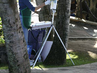 Maui Plein Air Painting Invitational