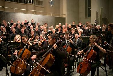 orchestra musicians.jpeg