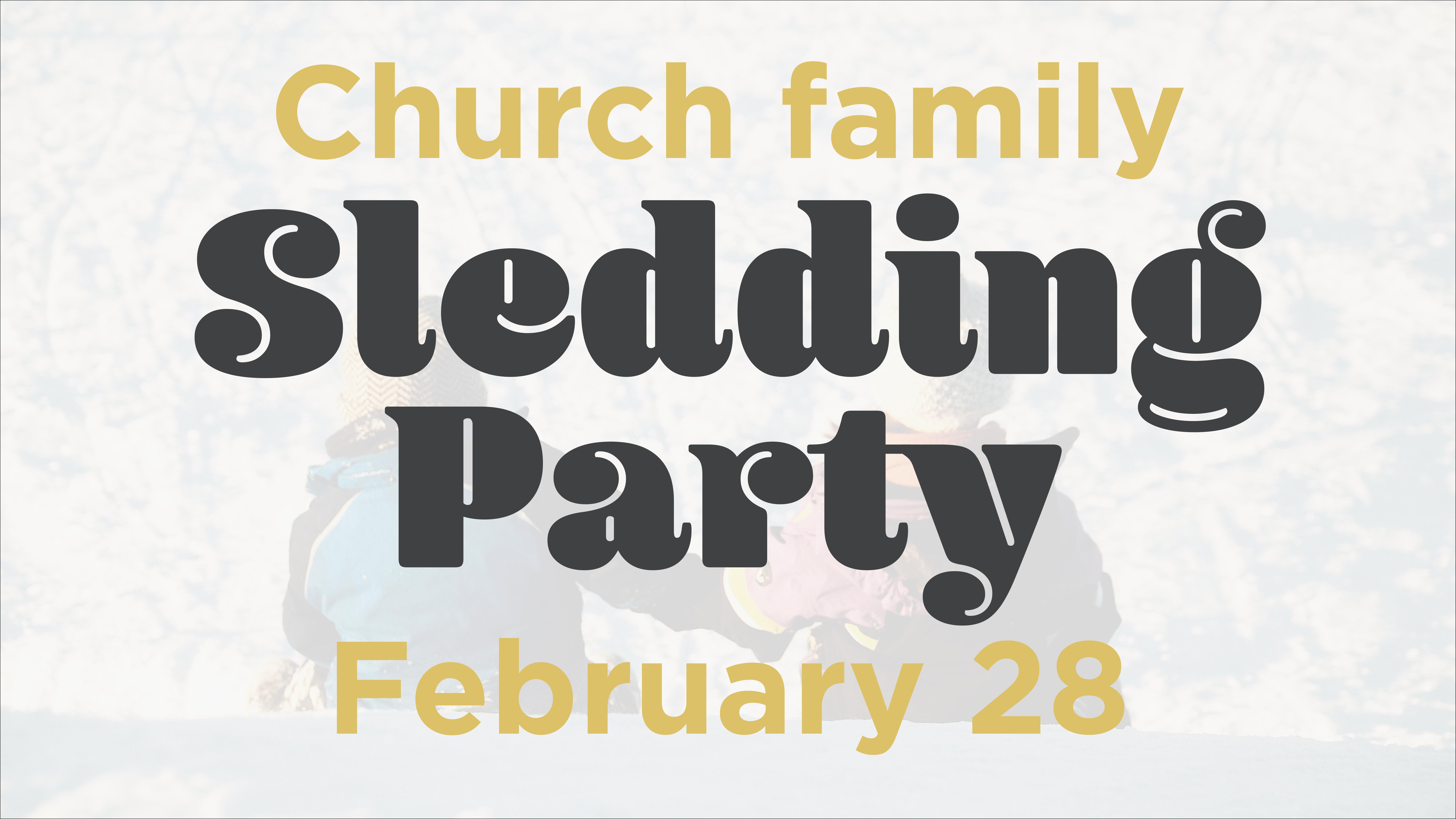 Sledding party 2.28