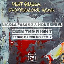Shaggy-Cover-Pedro-Carrilho-R75-Web.jpg