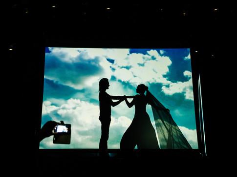 Театр теней на свадьбу