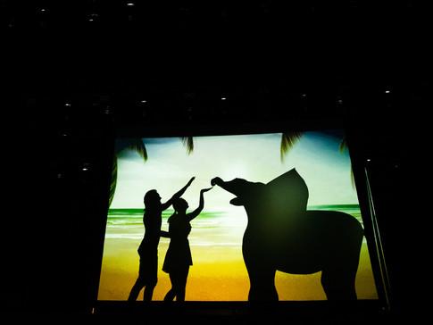 Путешествие по странам в театре теней
