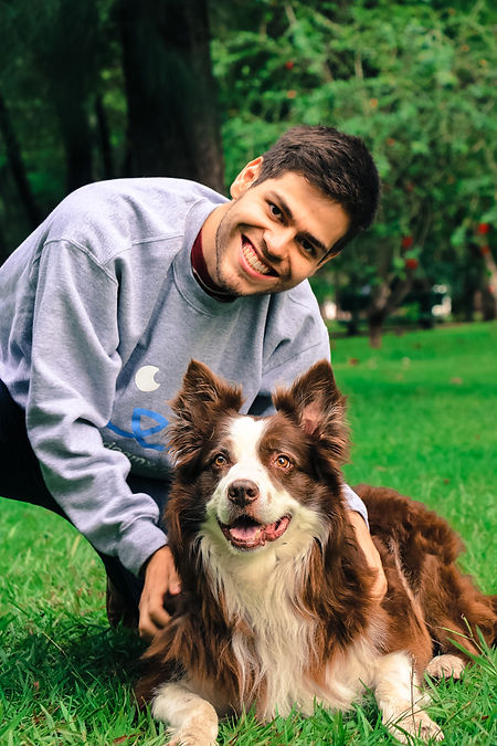 adiestramiento-canino-modest-dog-guadala