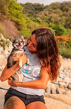 adiestramiento-canino-gdl-modest-dog-per