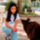 adiestramiento-canino-mexico-gdl-perros-