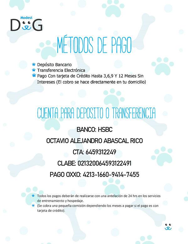 METODOS-DE-PAGO-(actualizado)(1).jpg