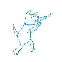 modest-dog-guadalajara-mascotas-perros-h