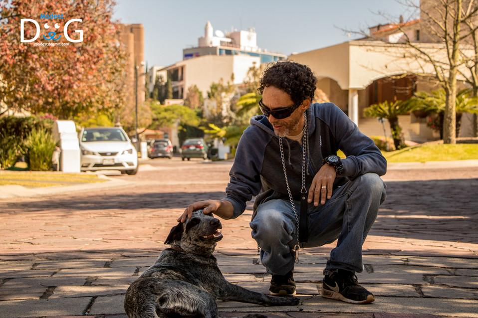 adiestramiento-canino-en-guadalajara-mod