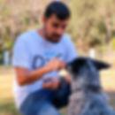 perros-adiestramiento-gdl-modest-dog-gua