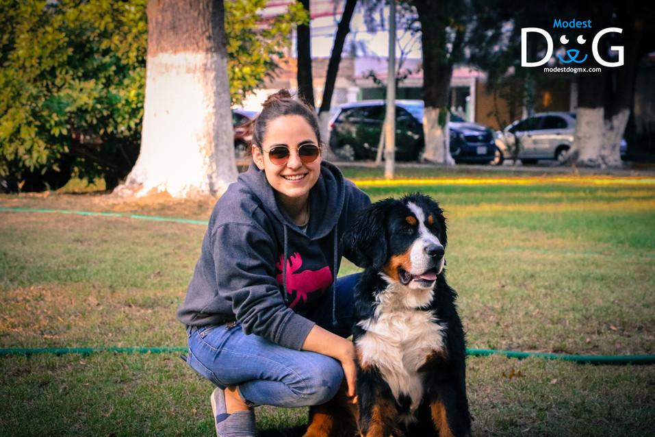 guadalajara-adiestramiento-canino-modest