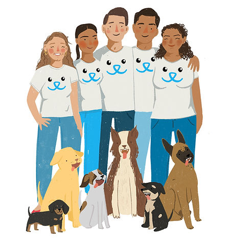 mascotas-perros-guadalajara-adiestramien