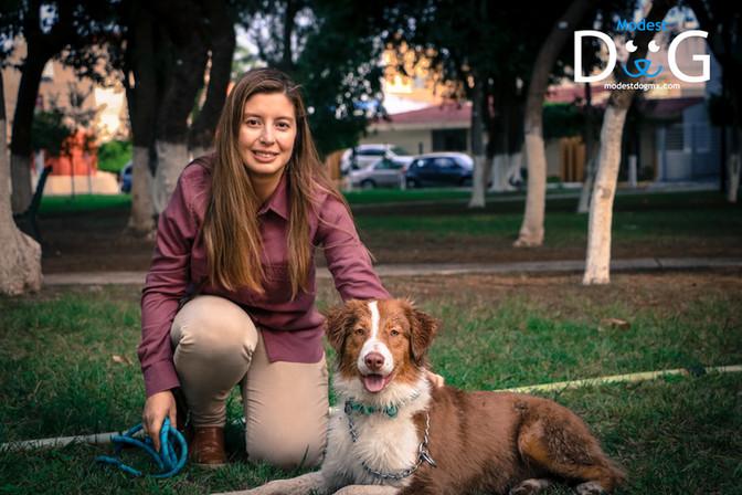 modest-dog-gdl-adiestramiento-canino-per