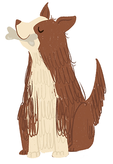 adiestramiento-canino-gdl-perros-mascota