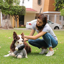vianey-montoya-e-commerce-modest-dog-adi