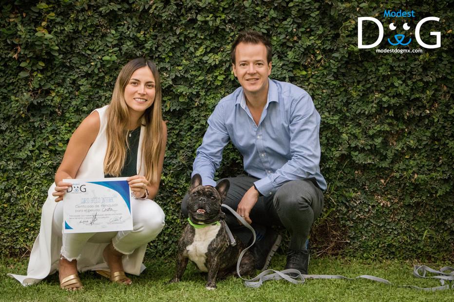 perros-modest-dog-gdl-coach-canino-entre