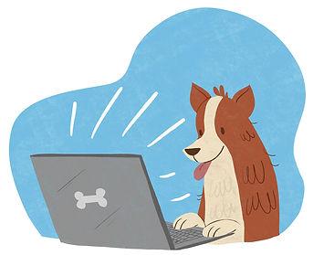 modest-dog-adiestramiento-canino-perros-