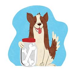 adiestramiento-canino-modest-dog-gdl-mex