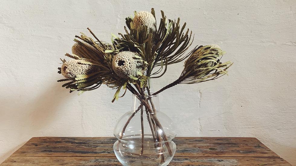 Banksia Bouquet (6 stuks)