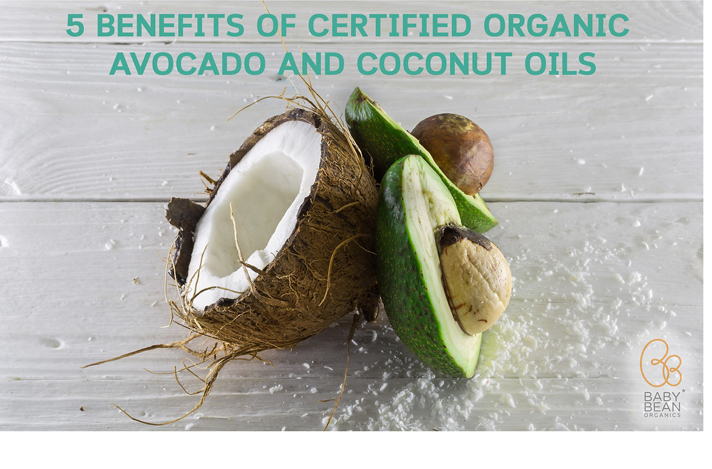 5 Benefits of Certified Organic Coconut and Avocado Oils
