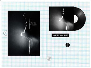 vinyle.jpg