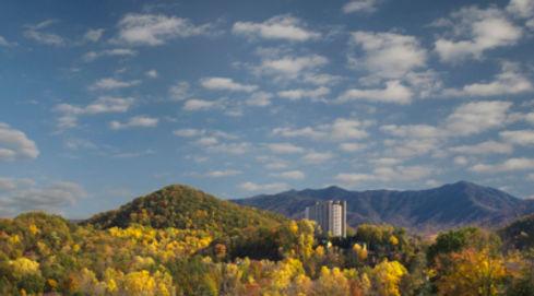 Park Vista.jpg