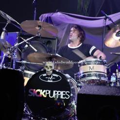 sickpuppies13.JPG