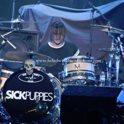 sickpuppies28.JPG
