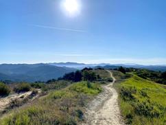 Photo credit: Aline Mayne - Santa Monica mountains, California, USA