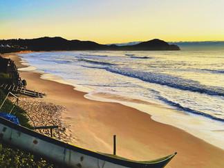 O show das Baleias na Praia do Rosa