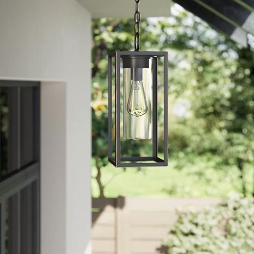 Damarcus 1-Light Outdoor Hanging Lantern