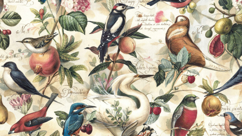Wrapping Paper Birds & Fruits
