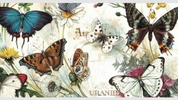 Butterflies Post Card