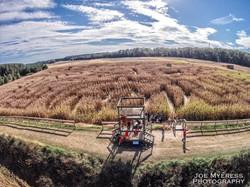 Cornfield maze aerial