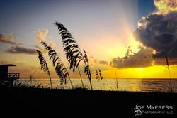 Sobe South Beach Sunrise