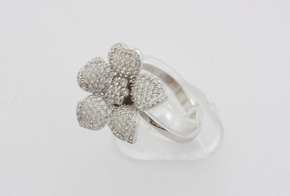 castrus anel prata
