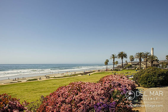 Del-Mar_Dog-Beach_002.jpg