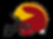 TPPW-Helmet_04.png