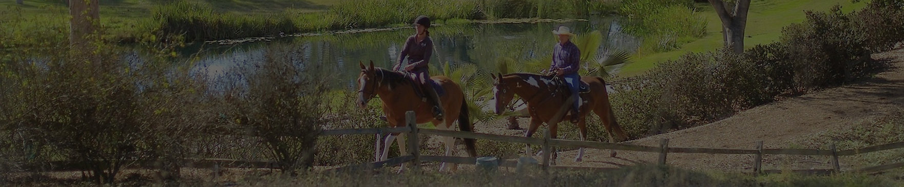 Rancho-Santa-Fe_Horses_001_edited.jpg