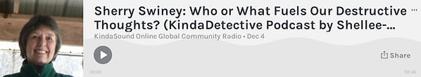 Sherry on KindaDetective 12-4-20.jpg