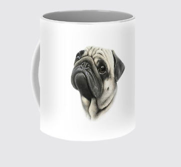 pugmug with background.jpg
