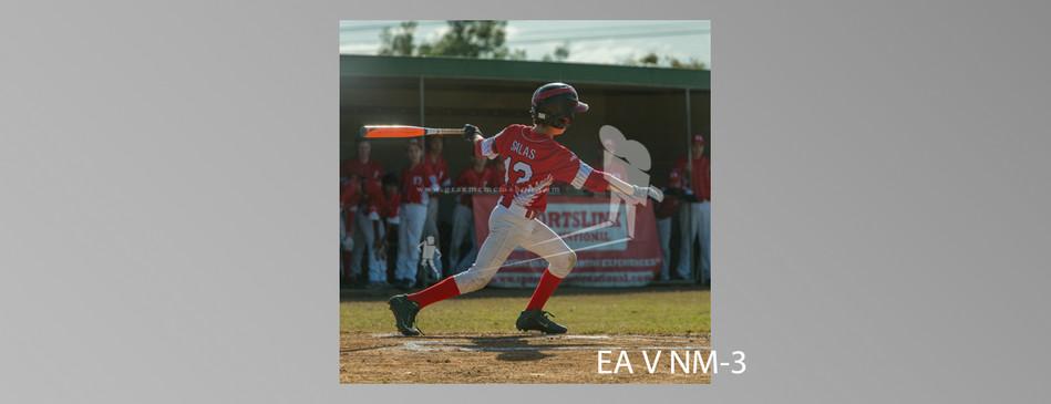 EA V NM-003.jpg