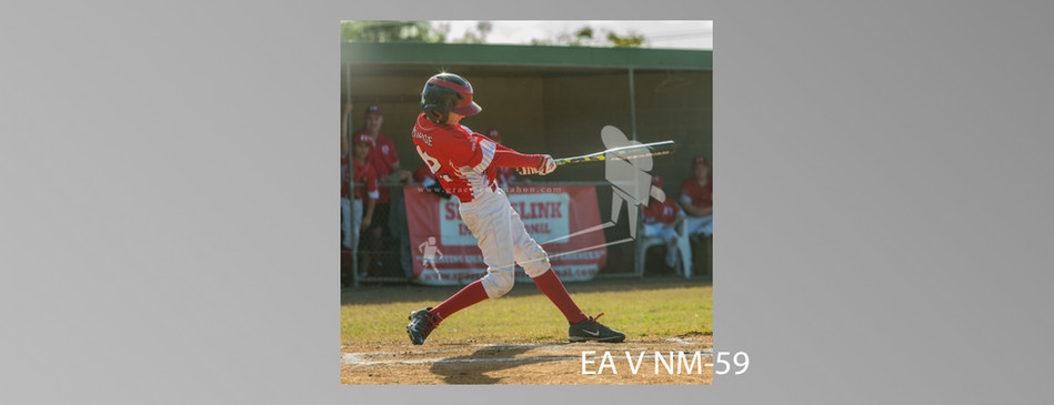 EA V NM-059.jpg