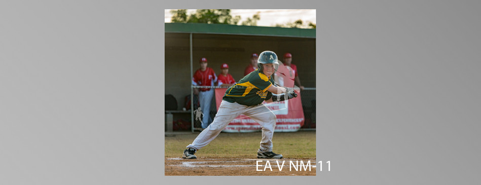 EA V NM-011.jpg