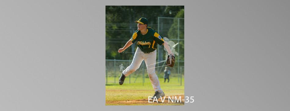 EA V NM-035.jpg