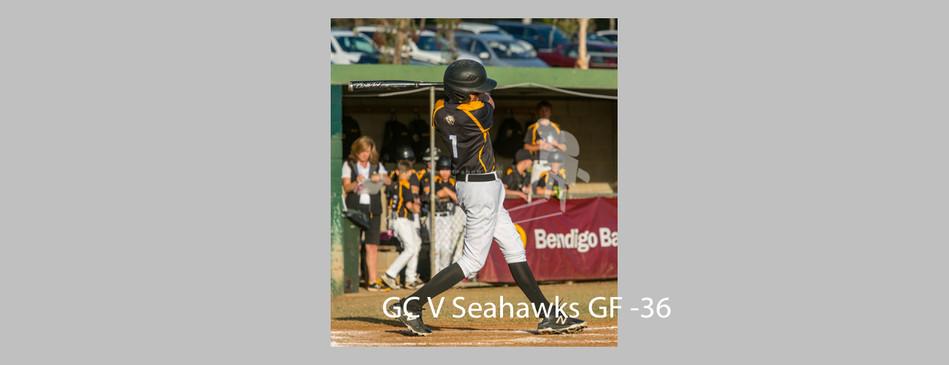 Seahawks V Cougars-036.jpg