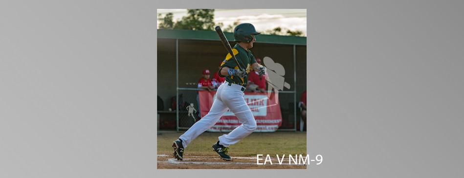 EA V NM-010.jpg