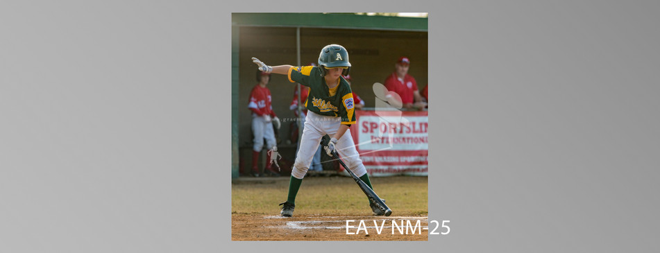 EA V NM-025.jpg