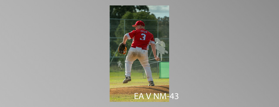 EA V NM-043.jpg
