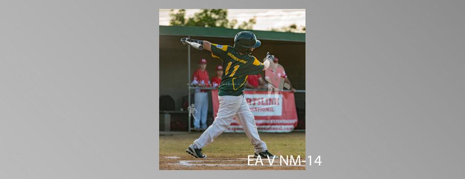 EA V NM-014.jpg